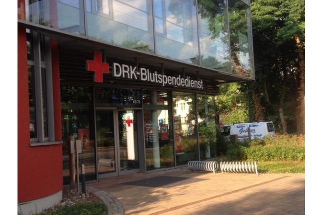 Немецкая клиника, откуда забирался костный мозг