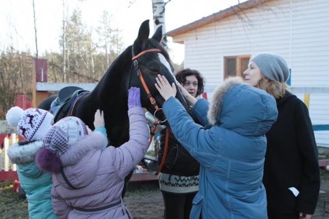Любимец ребят конь Мадрид.