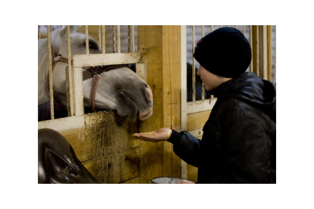 "Росляков Ваня на конюшне, 1-я смена Центра ""ВКС"", сентябрь 2011 года"
