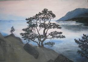 Сосна. рисунок Кати Рыбкиной
