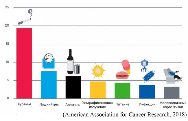 Развитие рака: соотношение факторов риска, на которые мы можем повлиять