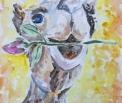 Галантный верблюд