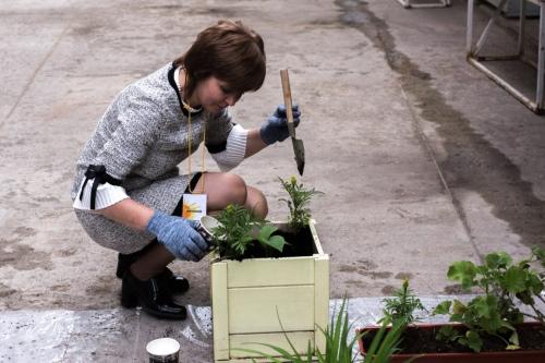 Каждый год на Дне памяти родители сажают цветы