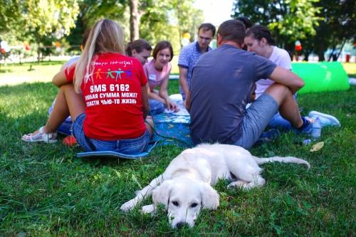 Волонтеры пришли на пикник с детьми и собаками
