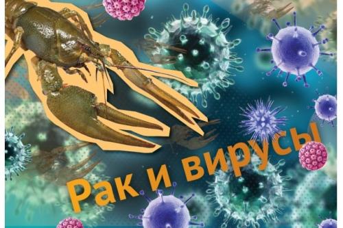 Вся правда о раке и вирусах